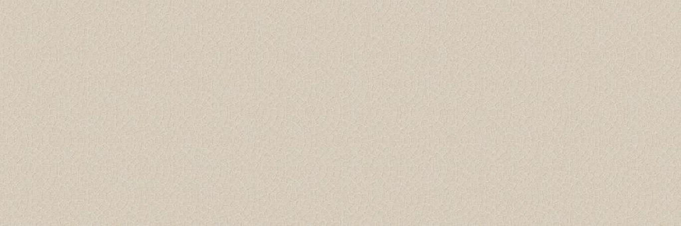 Princess Плитка настенная бежевая (C-PCS011Dn) 20х60<br>