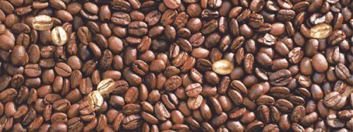 Декор Liberi 150*400*9 кофе DWU06LIB434<br>